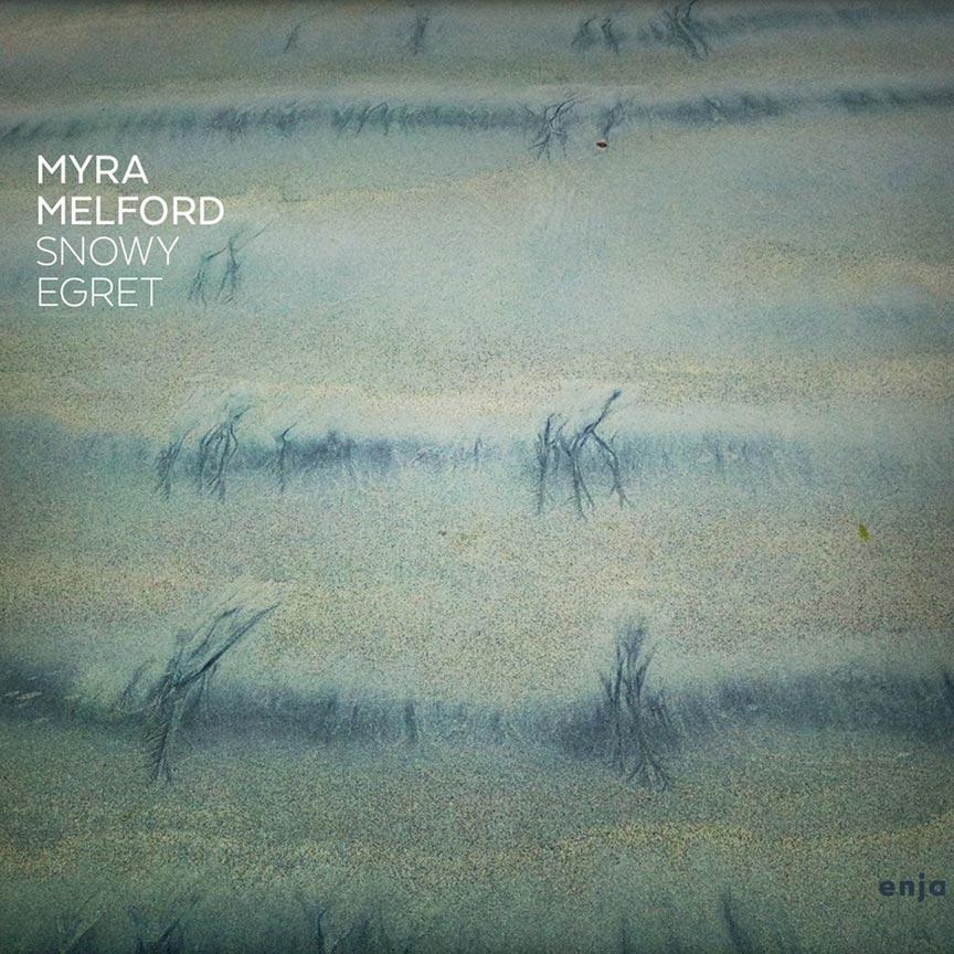 Myra-Melford-Snowy-Egret